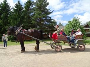 Mandrogi'nin sevimli at arabaları