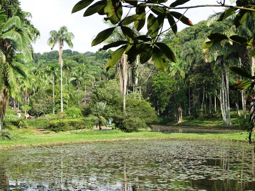 Botanik Parkı